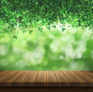 nature alternative medicine