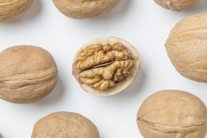 walnut culture